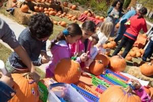 Hundreds Attend Fall Festival at Bellmoore Park in Johns Creek