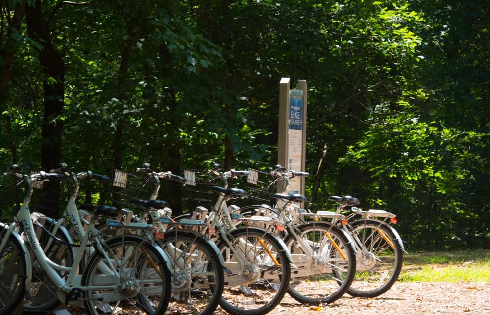 Suwanee Bike Share. New Homes in Suwanee, GA