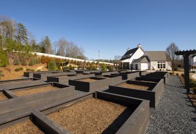 Idylwilde Community Garden Atlanta, GA New Home Amenities & Outdoor Living